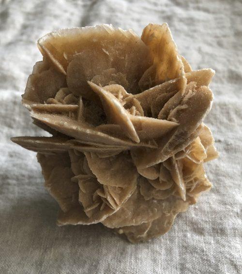 Desert Rose 5b